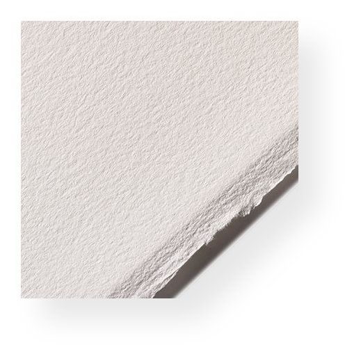 Legion A77-BFK250WH2210 Rives White 10 Pack 22