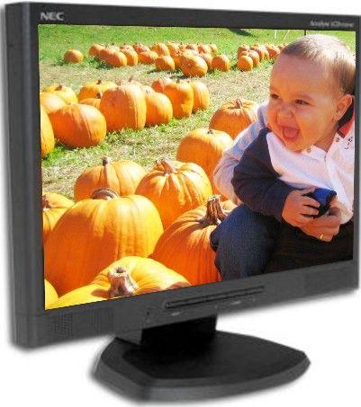 NEC ACCUSYNC LCD193WXM DRIVER