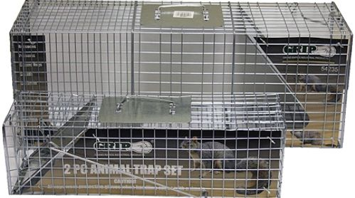 GRIP On Tools 54235 Two Piece Animal Trap Set; Ideal and humane way to trap and relocate unwanted pests around the home or office; Large trap is great for catching raccoons, possums, ground hogs, and skunks; while the small trap catches squirrels, rabbits, and chipmunks; UPC 097257542353 (GRIP54235 GRIP-54235 54-235 542-35)