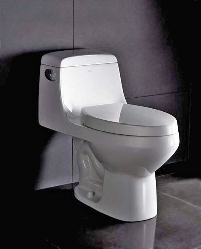Wasauna SAMARA Bathroom Toilet, 1.5-gallon flush for eco-friendly ...
