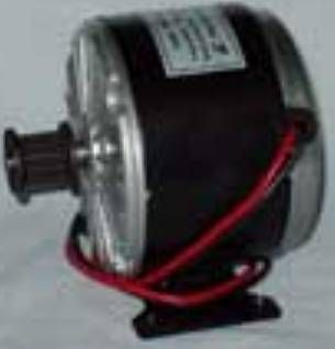 24 Volt 100 Watt Electric Scooter Motor